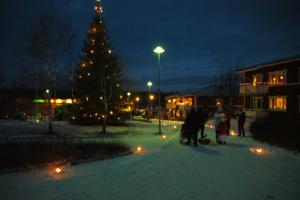 Roseniusparken i adventstid